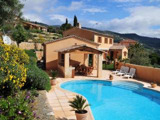 Beautiful Provencal Villa to Rent - Seillans vacation rentals