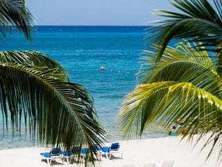 Brand New to the rental market! At San Francisco Beach, Elevator, Wi Fi - Cozumel vacation rentals