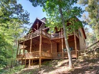 6 bedroom Cabin with Internet Access in Mineral Bluff - Mineral Bluff vacation rentals