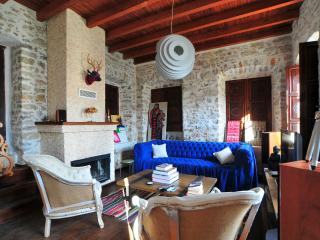 historical house - Aegean Region vacation rentals