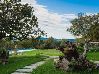 House Mavrici - Buzet vacation rentals