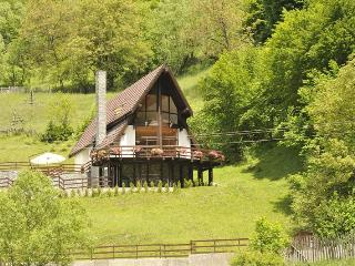 Negras Chalet - Traisteni vacation rentals