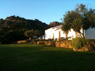 Nice Cottage with Internet Access and Dishwasher - Marvao vacation rentals