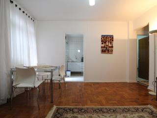 Convenient 2 bedroom Condo in Sao Paulo with Internet Access - Sao Paulo vacation rentals