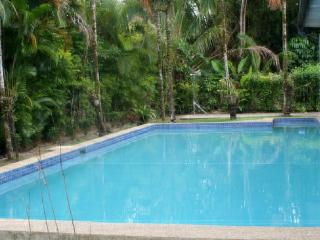 Luxury 4 Bedroom Villa, with Large Pool - Pacific Harbour vacation rentals