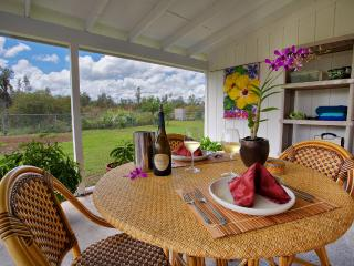 Come Enjoy the Natural Beauty and Serenity of the Big Island - Kapoho vacation rentals