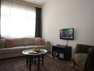 2 bdrm apartment, very central , in Sultanahmet. - Istanbul vacation rentals