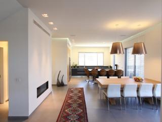 350m2, 4 bedroom, 2 living rooms architect Villa - Kfar Saba vacation rentals