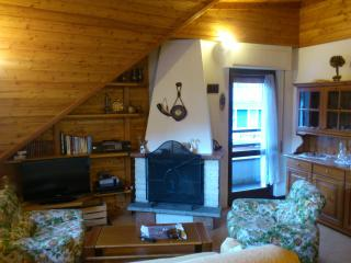Cozy 2 bedroom Condo in Aprica - Aprica vacation rentals