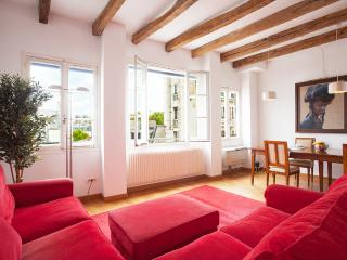 28. LARGE ST GERMAIN FLAT WITH NOTRE DAME VIEW - Paris vacation rentals