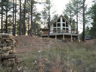 ***FLAGSTAFF Peace in the Pines, Cabin Sleeps 7 - Flagstaff vacation rentals