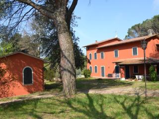 Families Tuscan house  between Lucca and Firenze - Lucca vacation rentals