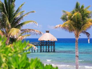 Great Place in Playa del Carmen!!! - Playa del Carmen vacation rentals