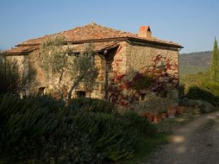 Historical Villa in Tuscany with pool - Civitella in Val di Chiana vacation rentals