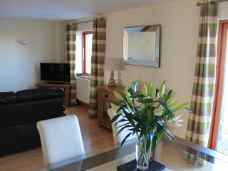 Holiday apartment on Milford Haven Marina - Milford Haven vacation rentals