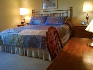 LODGE3026 - Pagosa Springs vacation rentals