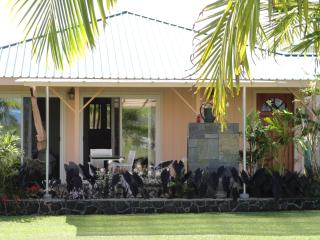 Majestic 5 acre estate - Puna District vacation rentals