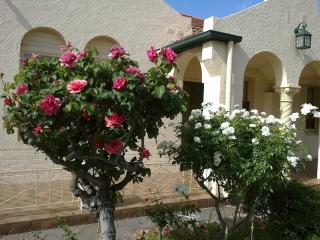 3 br house for 7 ppl. 10 min from airport or city - Glenelg vacation rentals