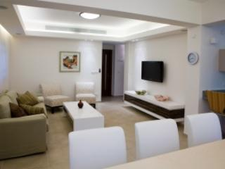 Beautiful 3 bd HAGDUD HAIVRI st. - Gedera vacation rentals