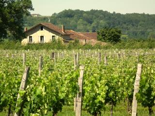 "Farmhouse-vineyard, views, pool, wifi, games-room - ""Le Prunier"" at Les Marais - Bergerac vacation rentals"