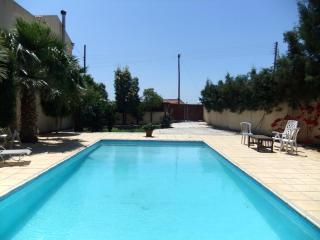 POOL SIDE VILLA - Oroklini vacation rentals