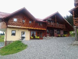 9 bedroom Gite with Deck in Cluj County - Cluj County vacation rentals