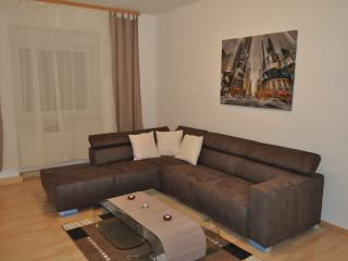 Nice Condo with Internet Access and Central Heating - Würzburg vacation rentals