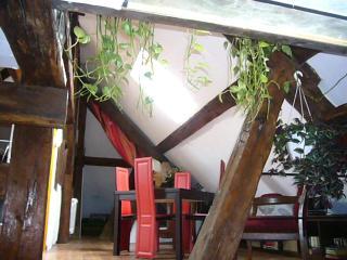 2 bedroom Condo with Internet Access in Dijon - Dijon vacation rentals