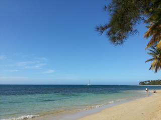 Brand new condo w/OCEAN VIEW in BEACHFRONT complex - Las Terrenas vacation rentals