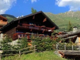 Traditional Swiss Chalet Ker Praet in Prime Location with Sauna & Private Chef - Les Diablerets vacation rentals