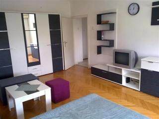 Great apartment in the center! - Ohrid vacation rentals