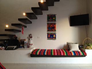 2 bedroom Penthouse Condo Apartment, 3 bath, swim - Campeche vacation rentals