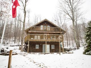 Beautiful 3 Bedroom Waterfront Log Cabin Cottage - Minden vacation rentals