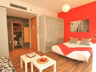 Perfect 1 bedroom Apartment in Province of Granada - Province of Granada vacation rentals