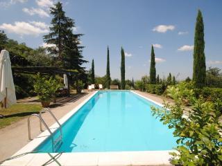 Villa il Cedro - Cortona vacation rentals