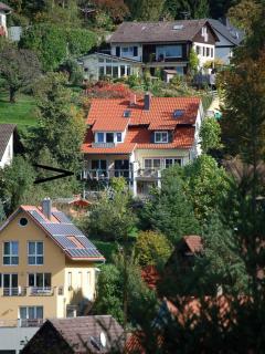Black Forest Retrieve in Badenweiler-Schweighof - Badenweiler vacation rentals