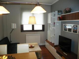 2 Bedroom Apartment, City Centre 2    Apartamento 2 Dormitorios, Centro Ciudad 2 A - Salamanca vacation rentals