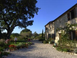 La Casa Sulla Collina/The House on the Hill - Serrungarina vacation rentals