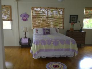 The Orchid House above Kealakekua Bay - Captain Cook vacation rentals