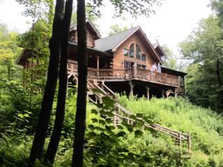 Lakefront Cabin, Sleeps14 (5Bed,3BA,2hr from NYC) - Livingston Manor vacation rentals