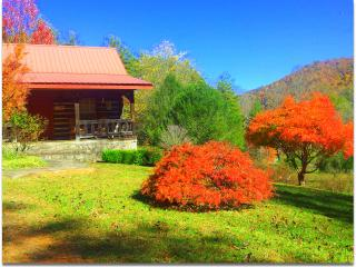 Smoky Mtn. Retreat-- Log Cabin--Vacation Rental-Log Cabin Inn - Robbinsville vacation rentals