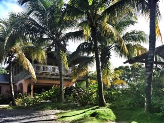 Perfect Villa with Deck and Internet Access - West End vacation rentals