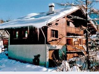 Le Wallis - Saint-Pierre-de-Chartreuse vacation rentals