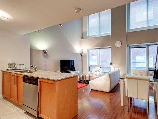 Two Floor Apartment In Downtown Montreal - Montreal vacation rentals