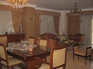 Big nice apartment near Giza Pyramids - Giza vacation rentals
