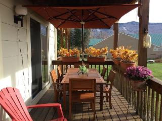 Forest Ridge beautiful condo near Loon Mountain (FLE2M) - Lincoln vacation rentals