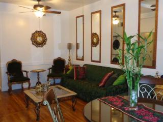 Duplex Penthouse - Midtown East Manhattan - New York City vacation rentals