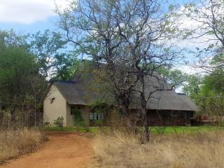 Bush Lodge Near Kruger Park - Phalaborwa vacation rentals