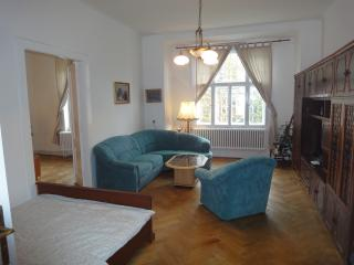 M3 Apartment large 3BR great location near center - Prague vacation rentals