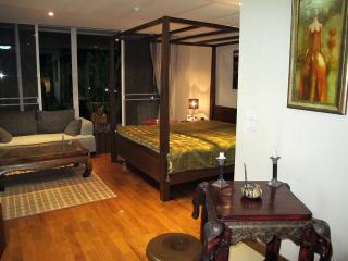 Chiang Mai executive condos for all taste and all budgets (by OWNER) - Chiang Mai Province vacation rentals